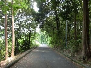 20150524_37神社横