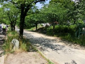 20150530_05大川沿い遊歩道