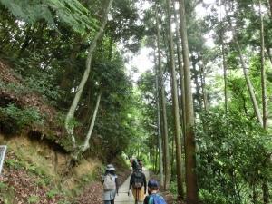 20150614_04旗尾岳へ