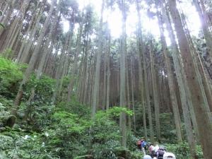 20150614_06旗尾岳へ