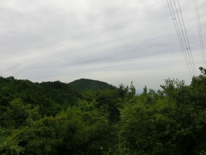 20150614_12府庁山へ