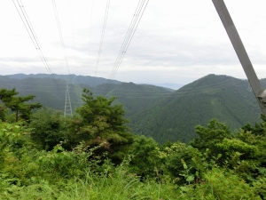 20150614_19田山