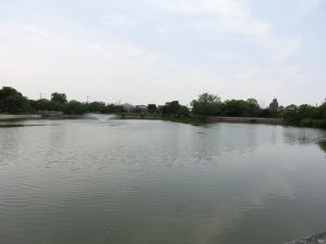 20150620_11万代池公園
