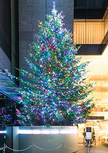 ミキモト ジャンボクリスマスツリー