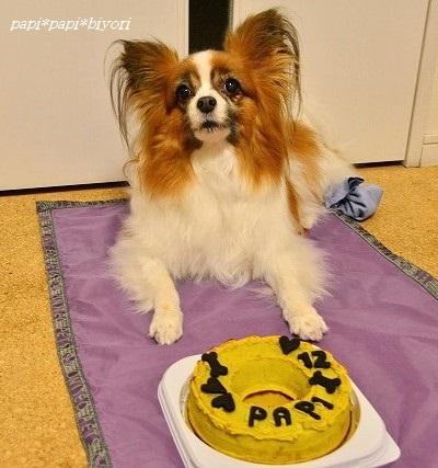 12歳になりました♪今年もケーキでお祝い。