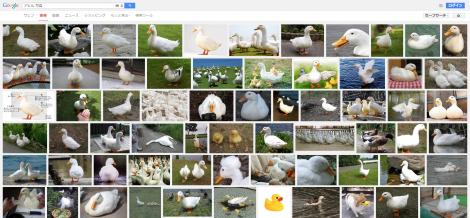 アヒル 写真 Google 検索