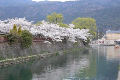 岡崎公園南11-20080405