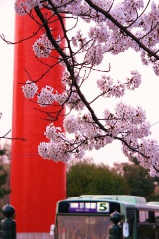 岡崎公園南14-20080405