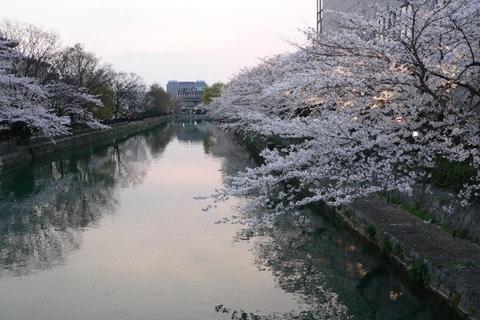 岡崎公園南15-20080405