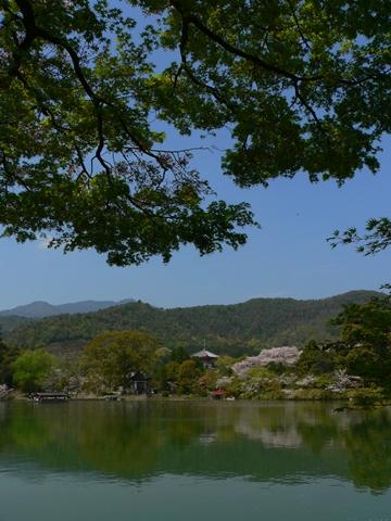 daikakuji大覚寺 (2)-20090412-120422