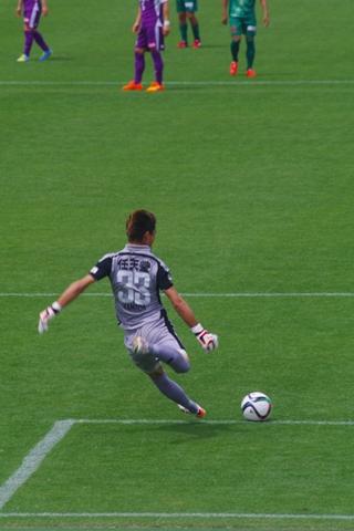 2015FC岐阜戦 (6)-20150506