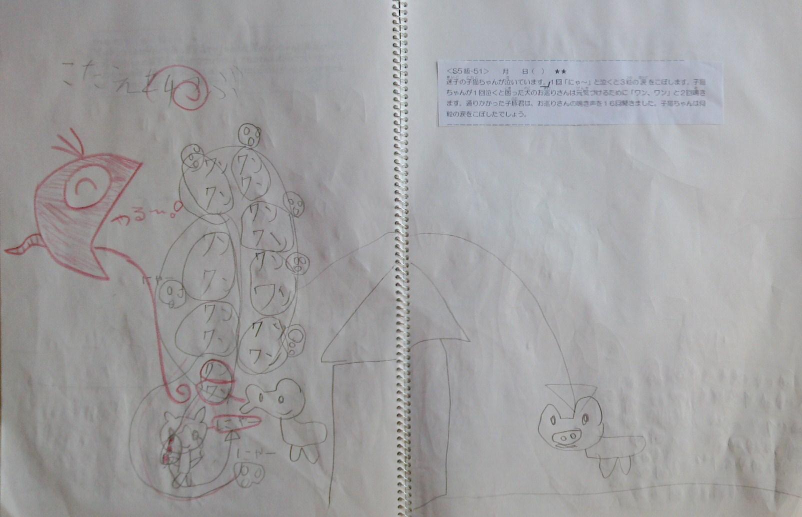 S5-51 hiro