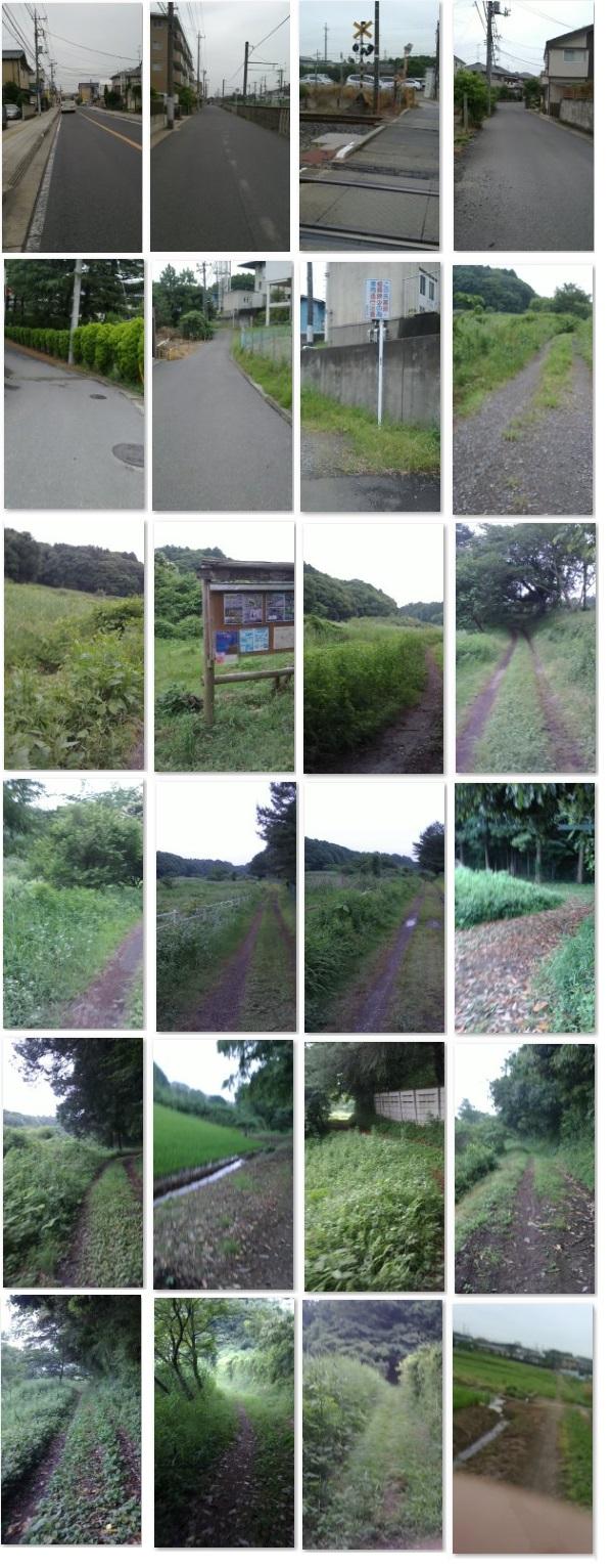 20150603 road