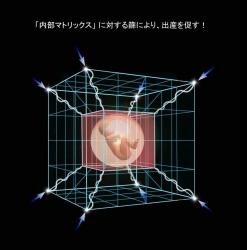 kanji-file-name-24.jpg