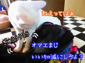 20150515003.jpg