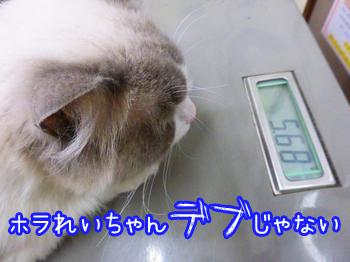 20150515010.jpg