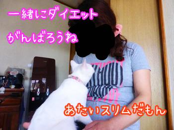 20150518004-01.jpg