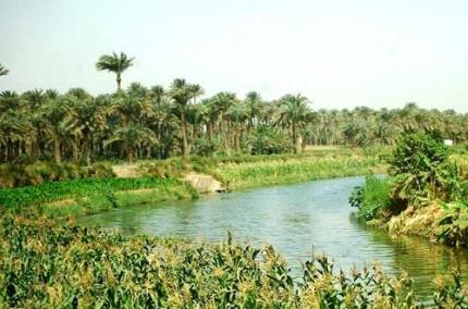 El_Fayoum Oasis