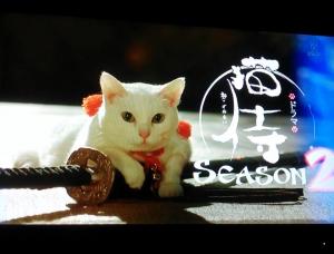 猫侍その2