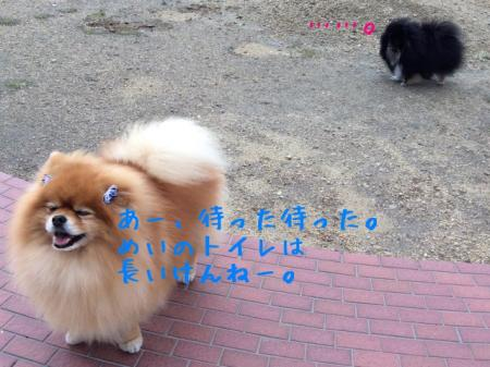 IMG_0941+(1)_convert_20150504114850.jpg