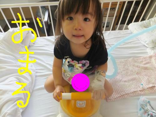 snap_poohsandaisukiyo_20155352918.jpg