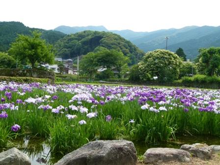 shixyoubu6075.jpg