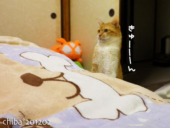 chiba12-02-90x.jpg