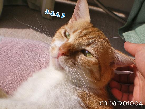 chiba14-12-44.jpg