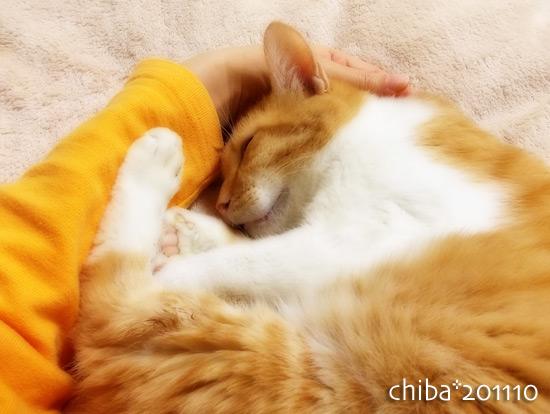 chiba14-12-49o.jpg