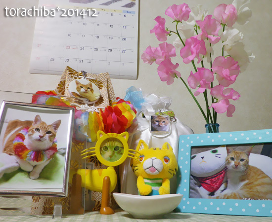 chiba14-12-64.jpg