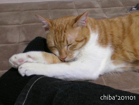 chiba15-01-55.jpg
