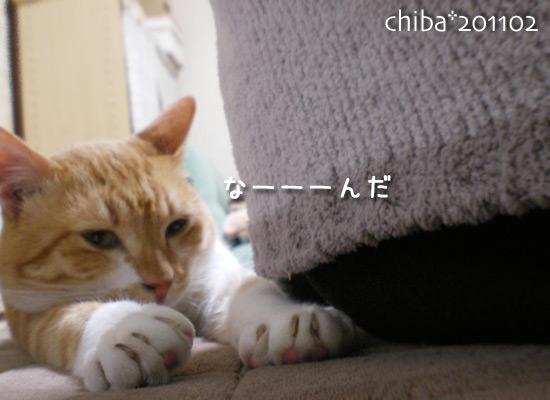 chiba15-02-65.jpg