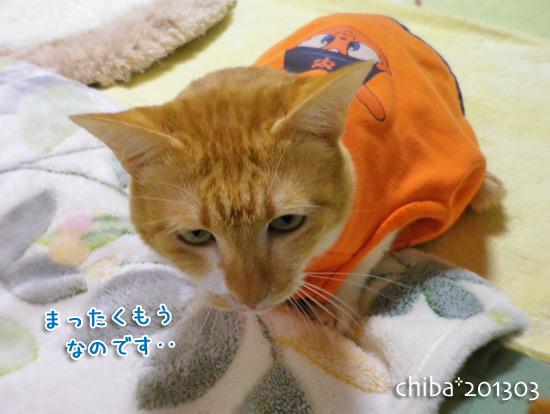 chiba15-03-35.jpg