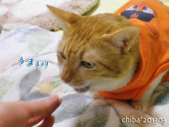 chiba15-03-37.jpg