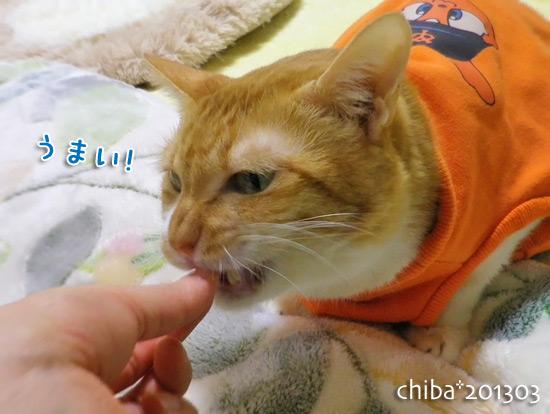 chiba15-03-39.jpg