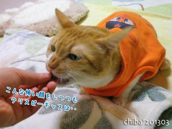 chiba15-03-41.jpg