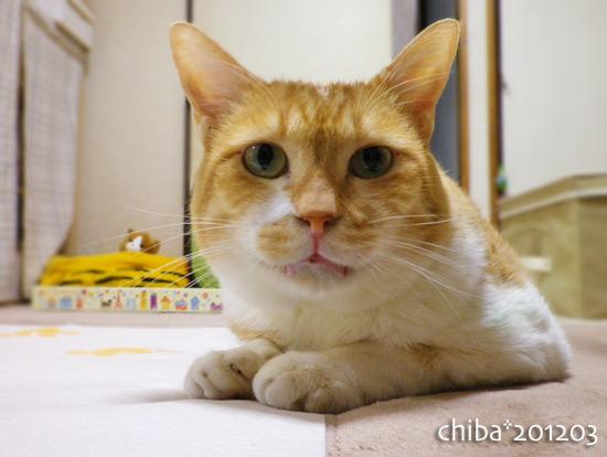 chiba15-03-45.jpg