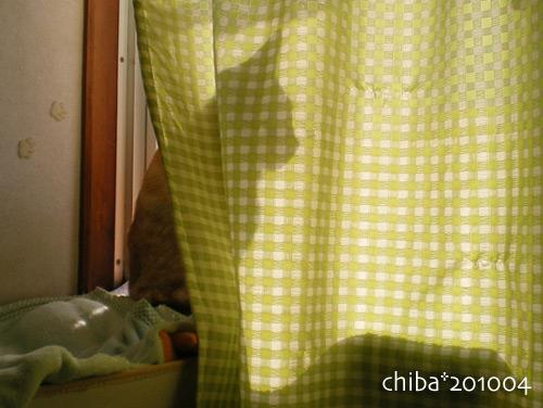 chiba15-03-48.jpg