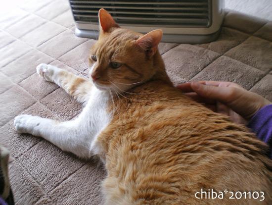 chiba15-03-86.jpg