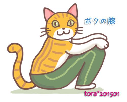 tora15-01-51.jpg