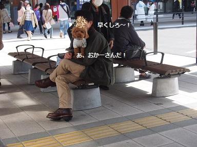 P3210455.jpg