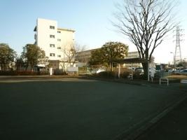 tb-ms001_a.jpg