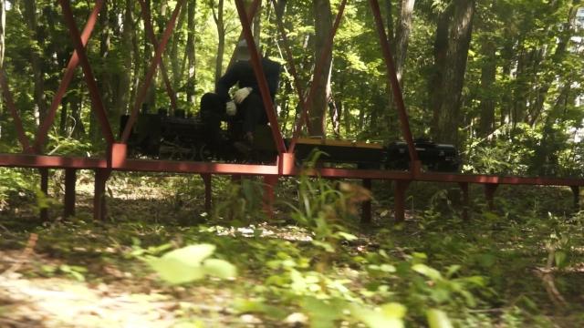 森林の中を駆ける汽車ぽっぽ