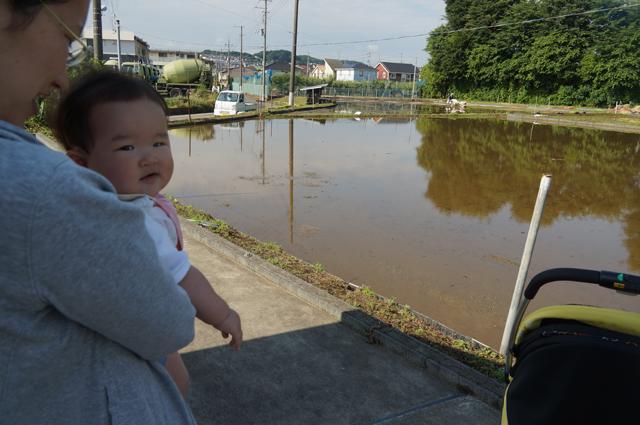 田んぼに来たカミさんと娘