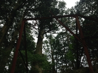 150523_十津川村_玉置神社 (5)