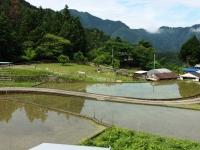 150524_十津川村武蔵集落 (27)