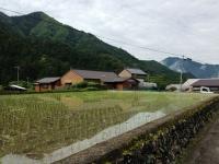 150524_十津川村武蔵集落 (13)