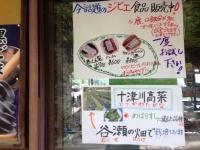 150524_十津川村_谷瀬のつり橋 (3)