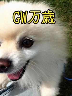 GW万歳BY恋