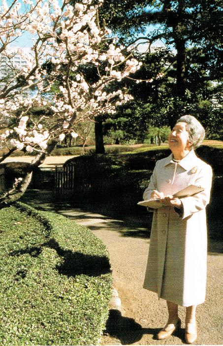 桜を見上げる皇后